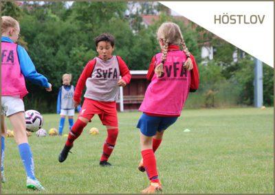 Ösby BP, Gustavsberg 1 – 3 nov